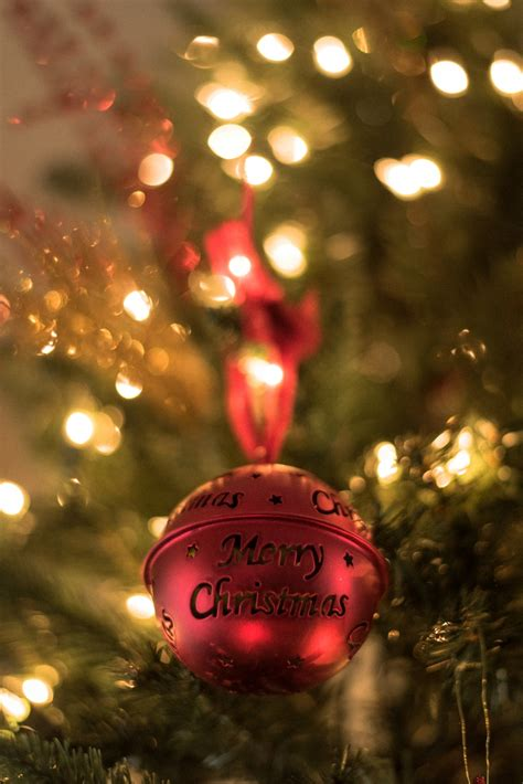500+ Merry Christmas Pictures [HD] | Download Free Images
