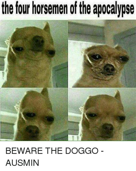 Image result for dank doggo memes (With images) | Four