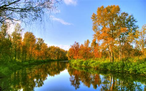 Fall River Tree Background 35890 : Wallpapers13