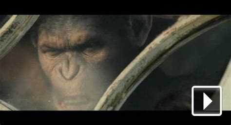 Zrození Planety opic / Rise of the Planet of the Apes