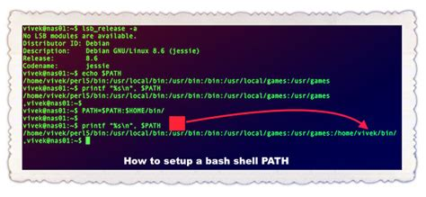 How to add to bash $PATH permanently on Linux – nixCraft