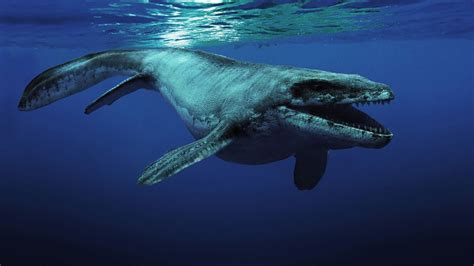 Prehistoric News : The Colors of Ancient Marine Reptiles