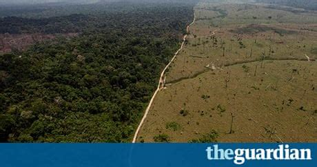 Amazon deforestation increased by one-third in past year